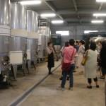 「河内ワイン」の見学に行ってきました